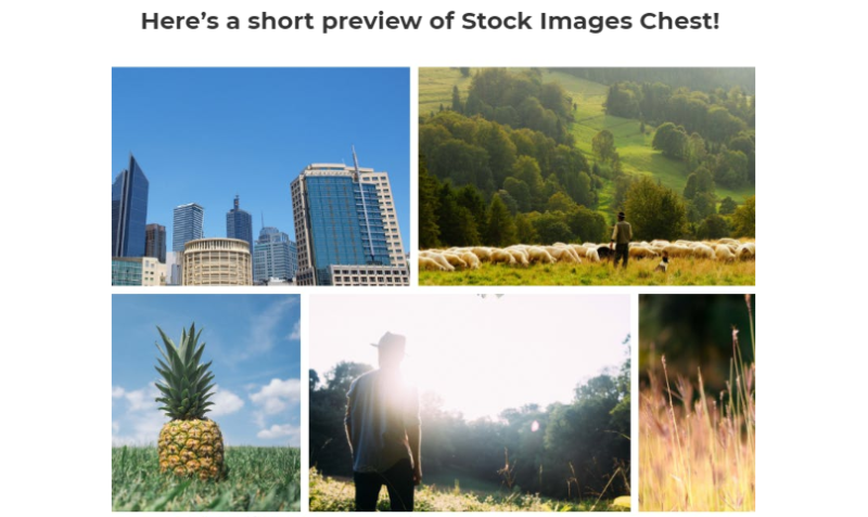 Stockify Visual Assets Pack