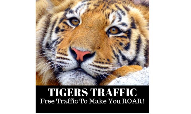 Tigers Traffic Formula by Dawood Islam