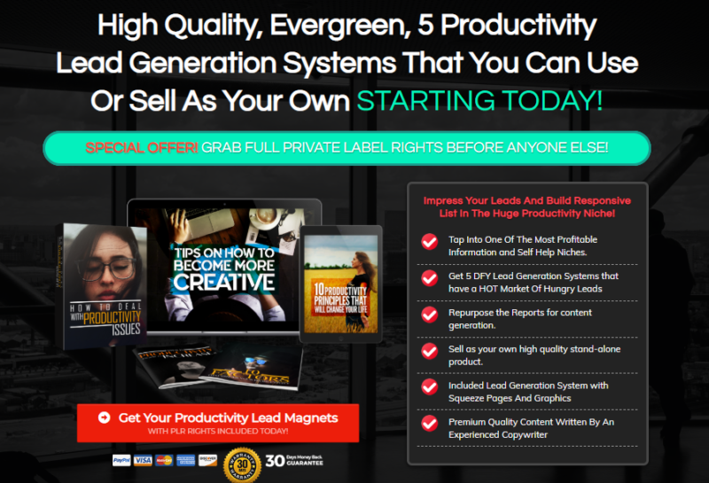 Productivity Lead Generation Systems PLR & OTO by Sorin Constantin