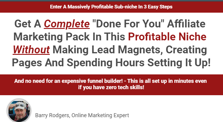 Done For You Affiliate Funnel Cinderella Solution